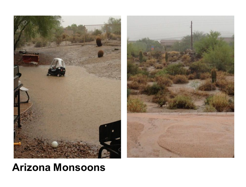 Arizona Monsoons