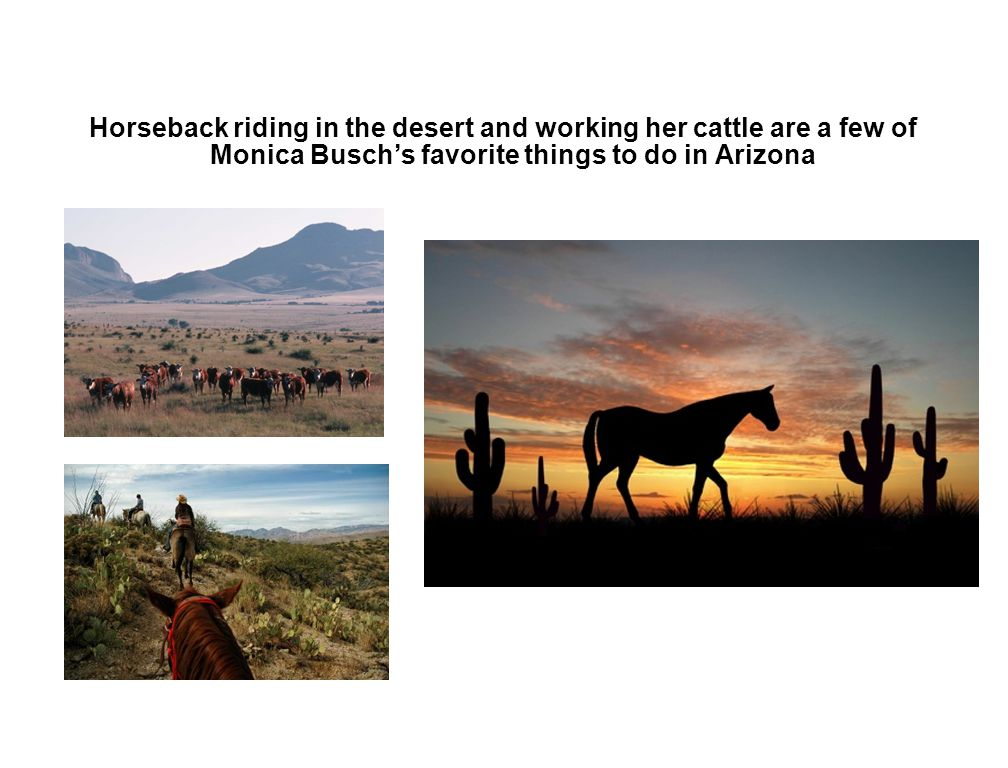 Horseback riding in the desert and working her cattle are a few of Monica Busch's favorite things to do in Arizona