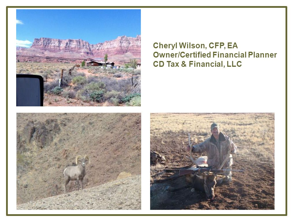 Cheryl Wilson, CFP, EA Owner/Certified Financial Planner CD Tax & Financial, LLC