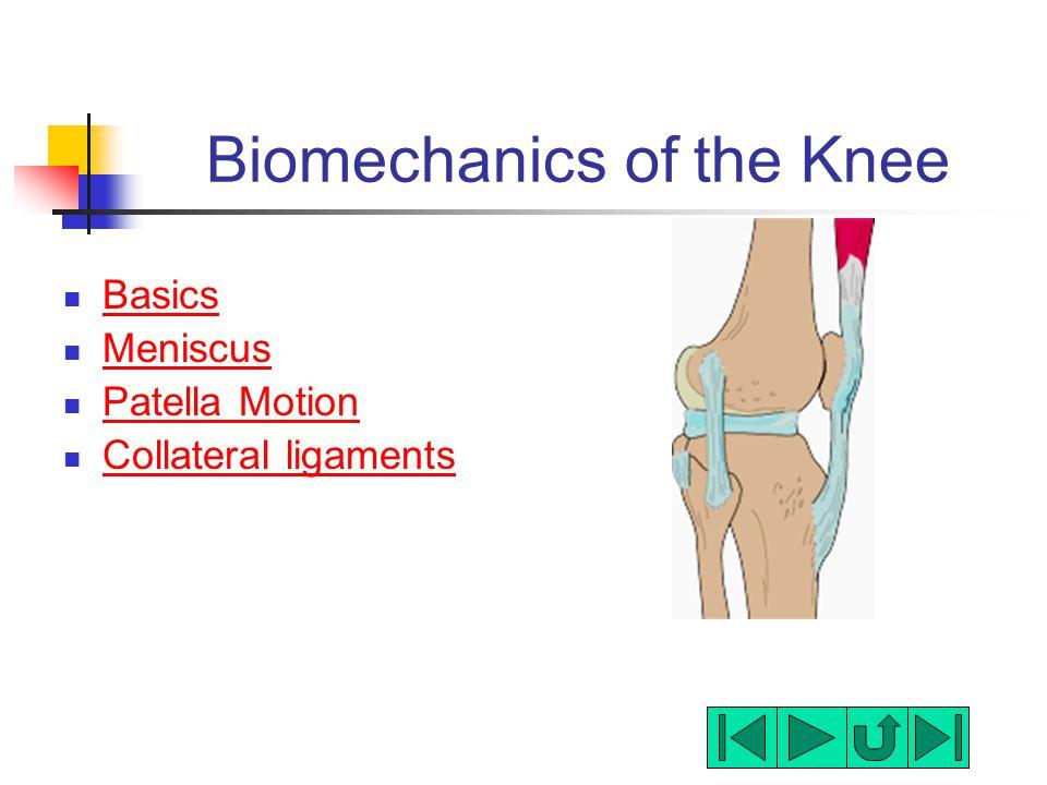 Biomechanics of the Knee Basics Meniscus Patella Motion Collateral ligaments