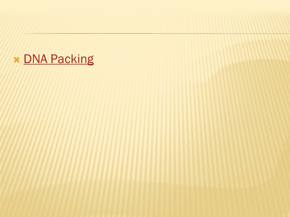  DNA Packing DNA Packing