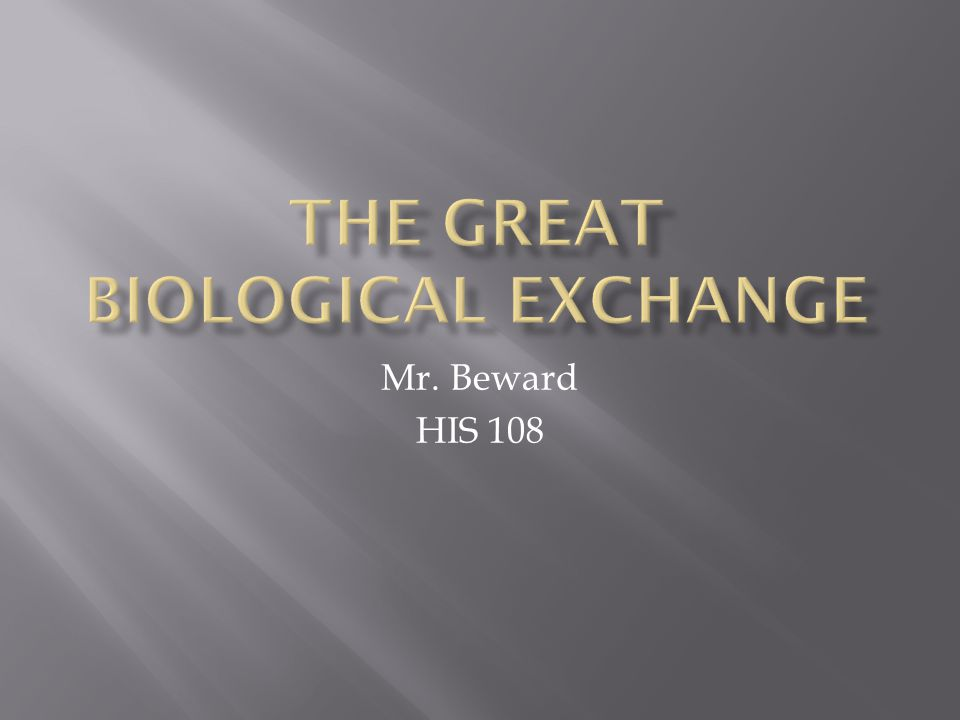 Mr. Beward HIS 108