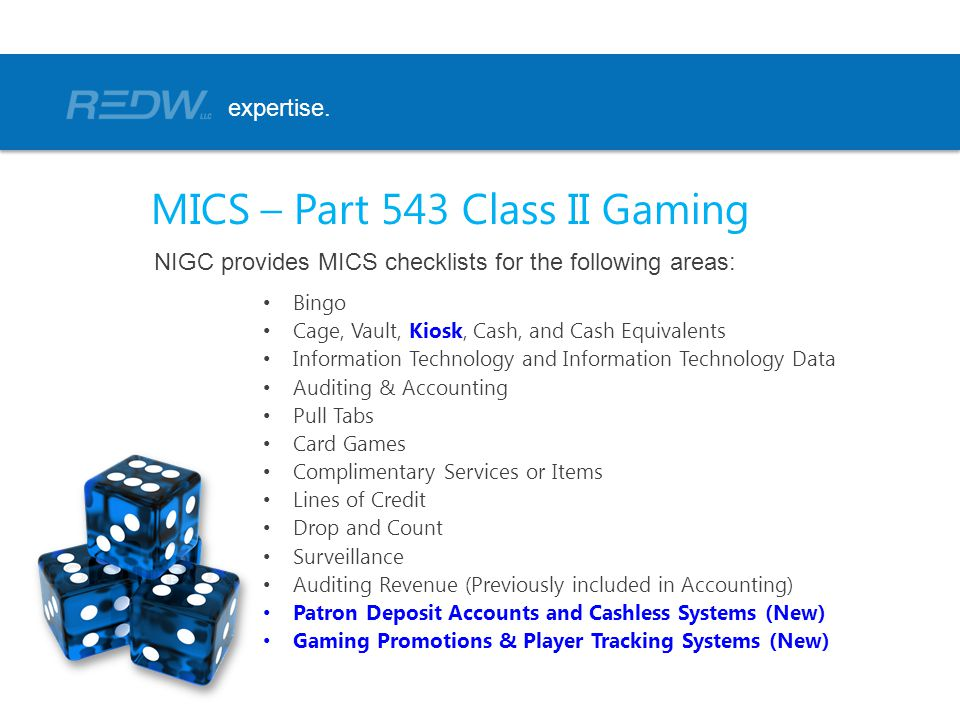 Bingo Cage, Vault, Kiosk, Cash, and Cash Equivalents Information Technology and Information Technology Data Auditing & Accounting Pull Tabs Card Games Complimentary Services or Items Lines of Credit Drop and Count Surveillance Auditing Revenue (Previously included in Accounting) Patron Deposit Accounts and Cashless Systems (New) Gaming Promotions & Player Tracking Systems (New) expertise.