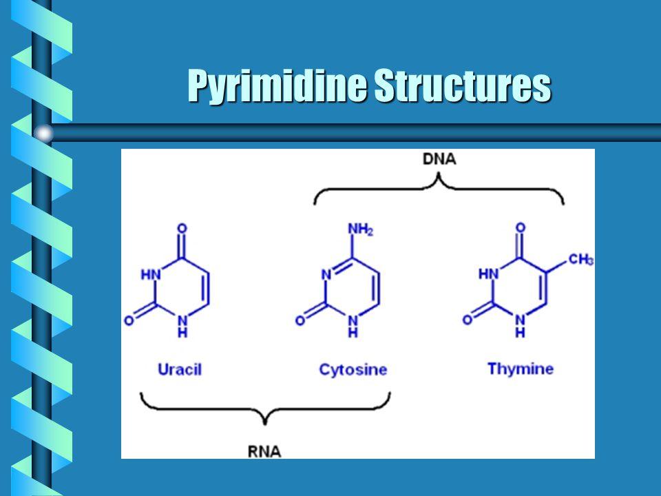 Pyrimidine Structures
