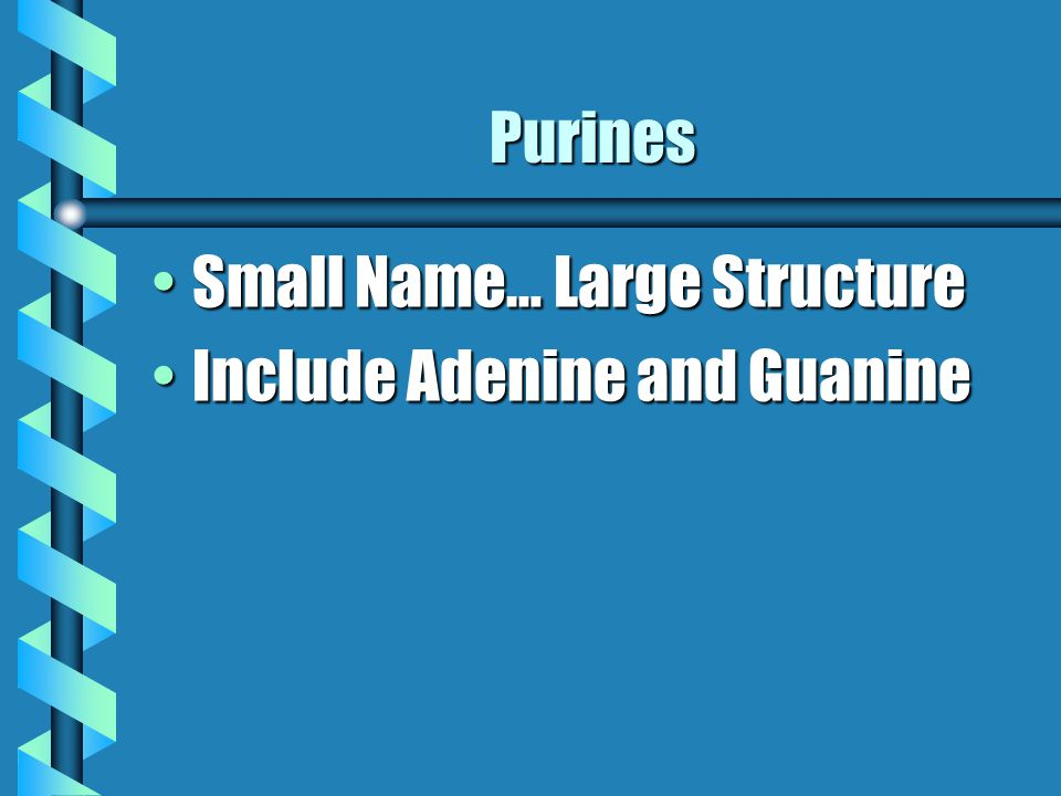 Purines Small Name… Large StructureSmall Name… Large Structure Include Adenine and GuanineInclude Adenine and Guanine