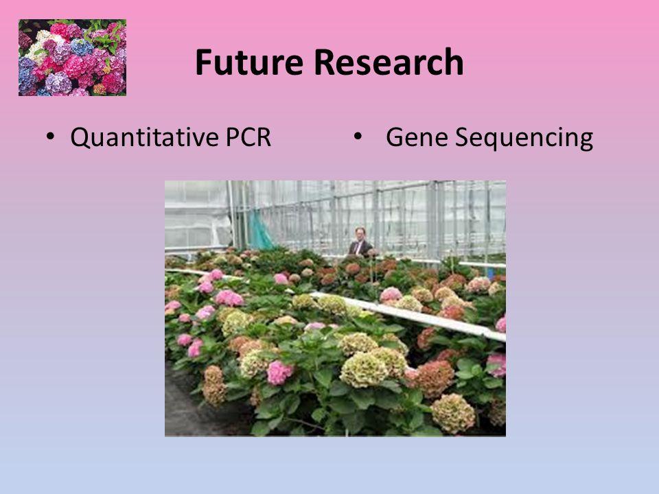 Future Research Quantitative PCR Gene Sequencing