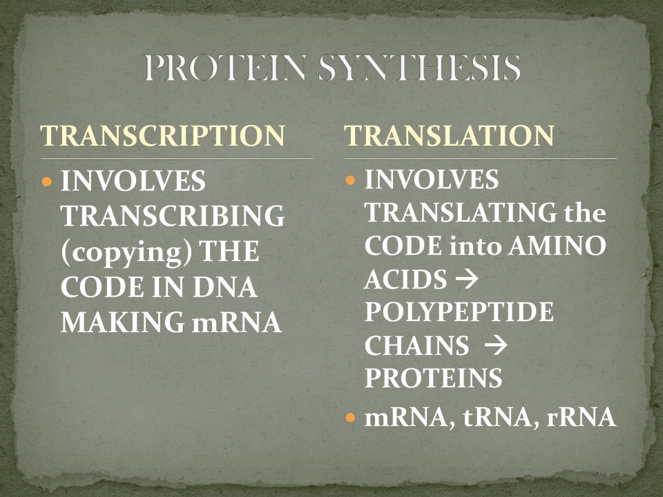 TRANSCRIPTION INVOLVES TRANSCRIBING (copying) THE CODE IN DNA MAKING mRNA INVOLVES TRANSLATING the CODE into AMINO ACIDS  POLYPEPTIDE CHAINS  PROTEINS mRNA, tRNA, rRNA TRANSLATION