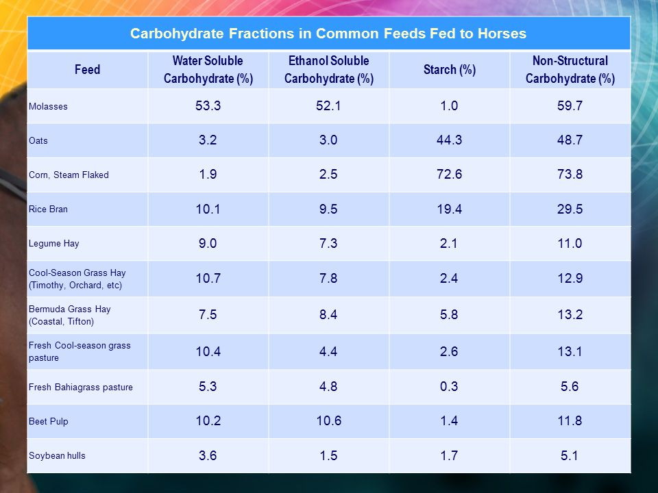 Carbohydrate Fractions in Common Feeds Fed to Horses Feed Water Soluble Carbohydrate (%) Ethanol Soluble Carbohydrate (%) Starch (%) Non-Structural Carbohydrate (%) Molasses 53.352.11.059.7 Oats 3.23.044.348.7 Corn, Steam Flaked 1.92.572.673.8 Rice Bran 10.19.519.429.5 Legume Hay 9.07.32.111.0 Cool-Season Grass Hay (Timothy, Orchard, etc) 10.77.82.412.9 Bermuda Grass Hay (Coastal, Tifton) 7.58.45.813.2 Fresh Cool-season grass pasture 10.44.42.613.1 Fresh Bahiagrass pasture 5.34.80.35.6 Beet Pulp 10.210.61.411.8 Soybean hulls 3.61.51.75.1