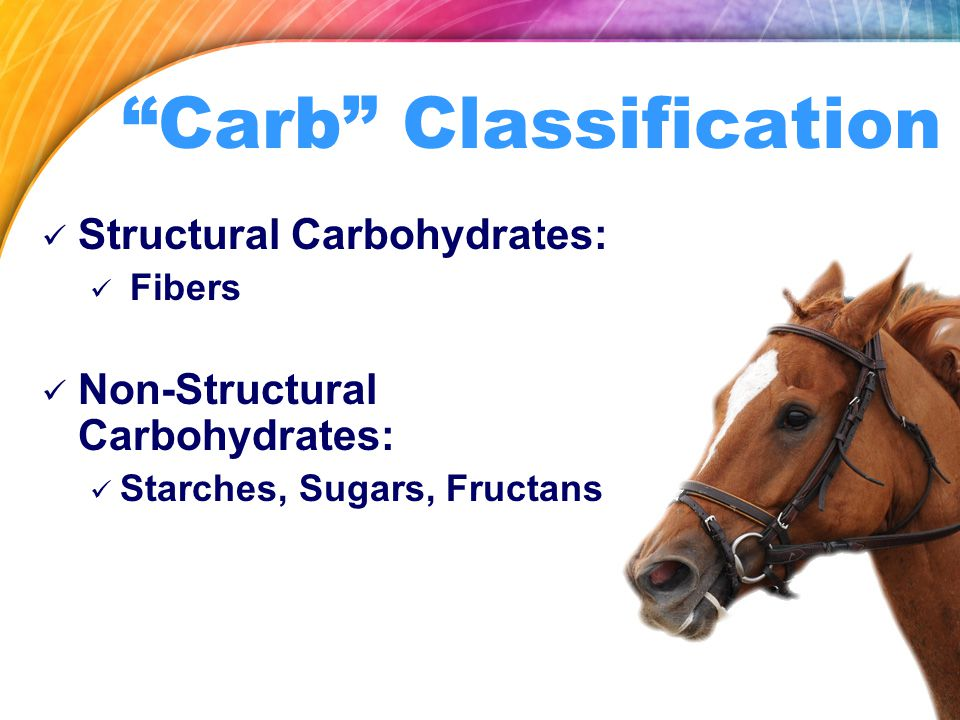 Carb Classification Structural Carbohydrates: Fibers Non-Structural Carbohydrates: Starches, Sugars, Fructans