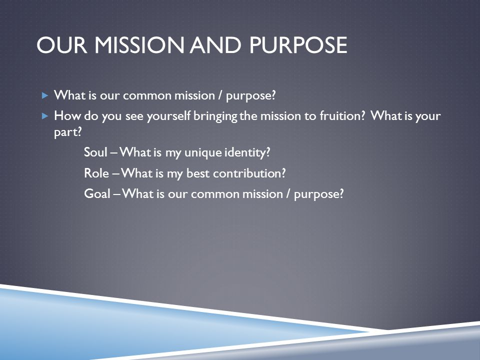 OUR MISSION AND PURPOSE  What is our common mission / purpose.