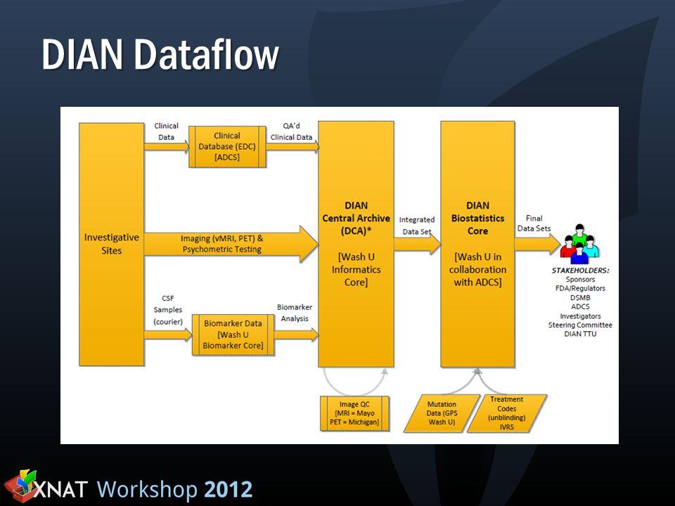 DIAN Dataflow
