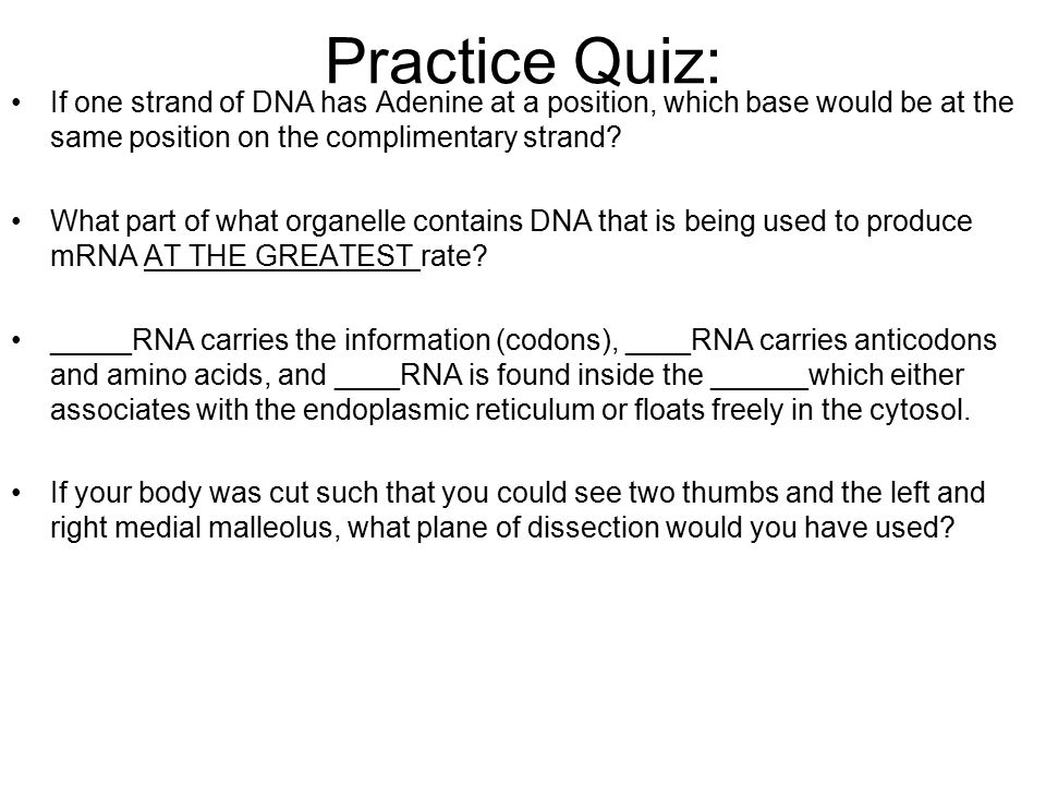 Practice Quiz: If one strand of DNA has Adenine at a position, which base would be at the same position on the complimentary strand? What part of what