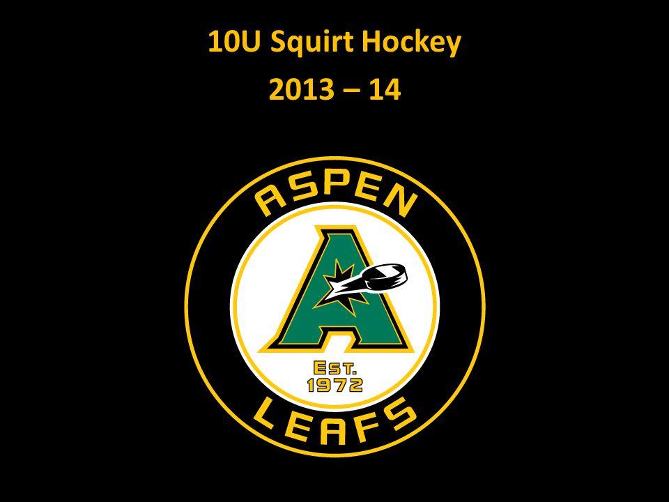 10U Squirt Hockey 2013 – 14