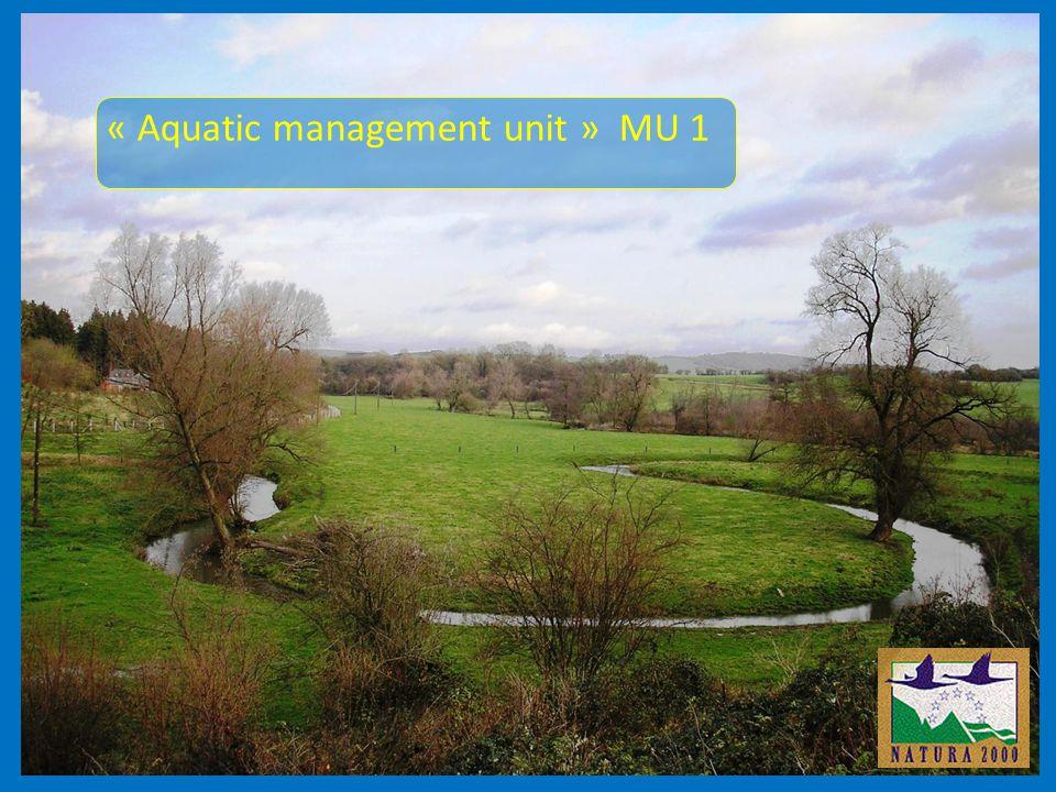 « Aquatic management unit » MU 1