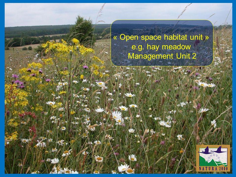 « Open space habitat unit » e.g. hay meadow Management Unit 2