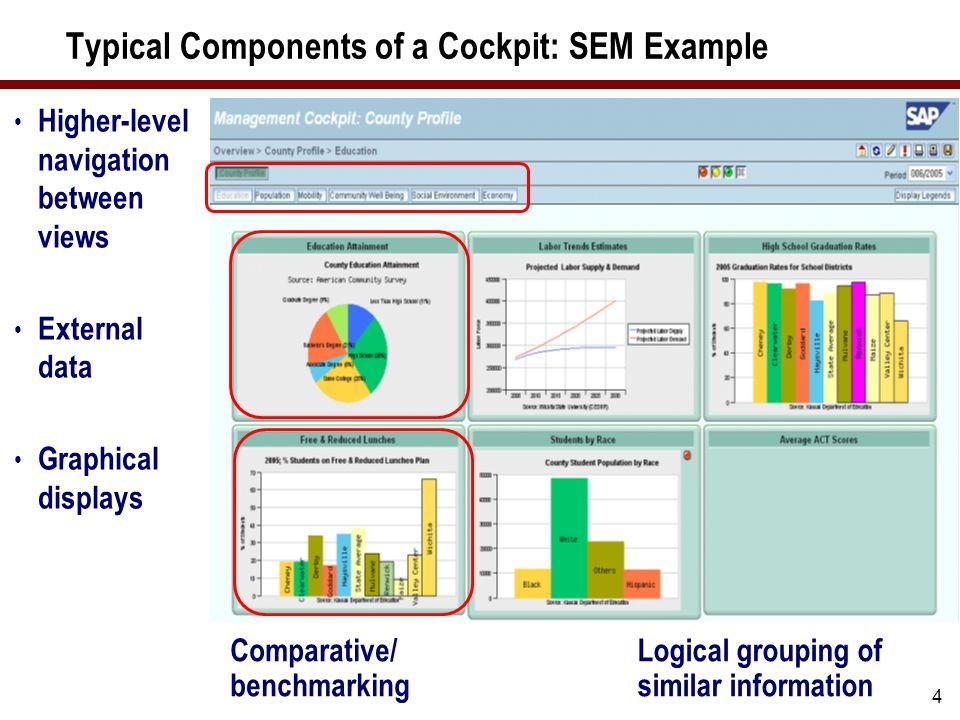 5 SEM Management Cockpit Illustrate best practices, benchmarks, or target performance Customize navigation menus and buttons