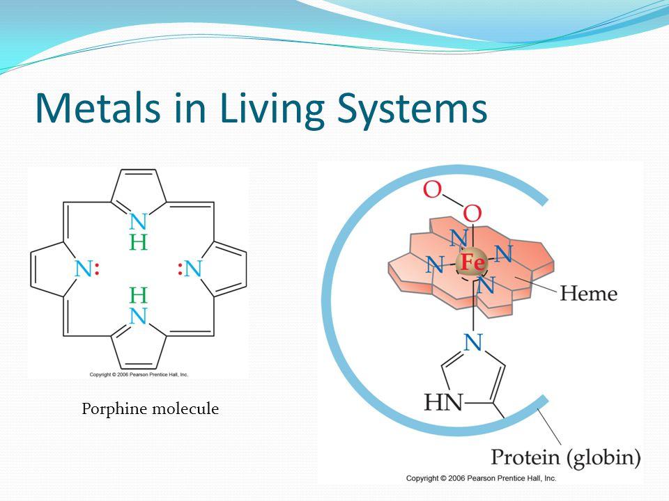 Metals in Living Systems Porphine molecule