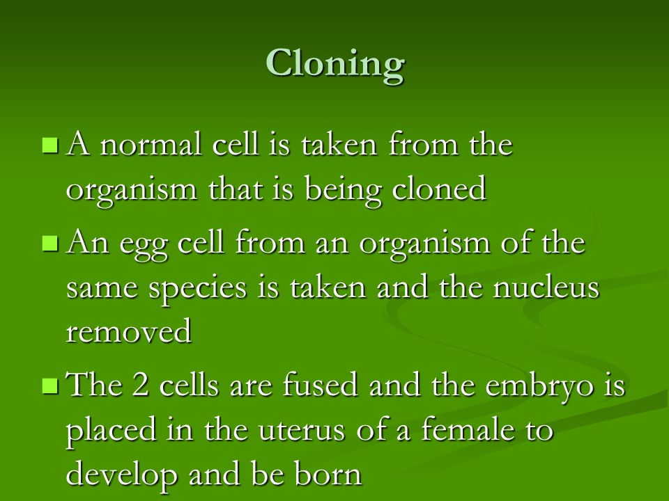Cloning A normal cell is taken from the organism that is being cloned A normal cell is taken from the organism that is being cloned An egg cell from an organism of the same species is taken and the nucleus removed An egg cell from an organism of the same species is taken and the nucleus removed The 2 cells are fused and the embryo is placed in the uterus of a female to develop and be born The 2 cells are fused and the embryo is placed in the uterus of a female to develop and be born