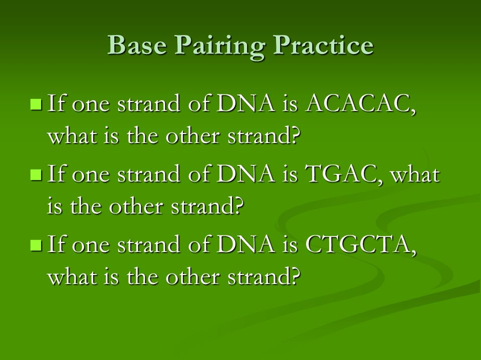 Base Pairing Practice If one strand of DNA is ACACAC, what is the other strand.