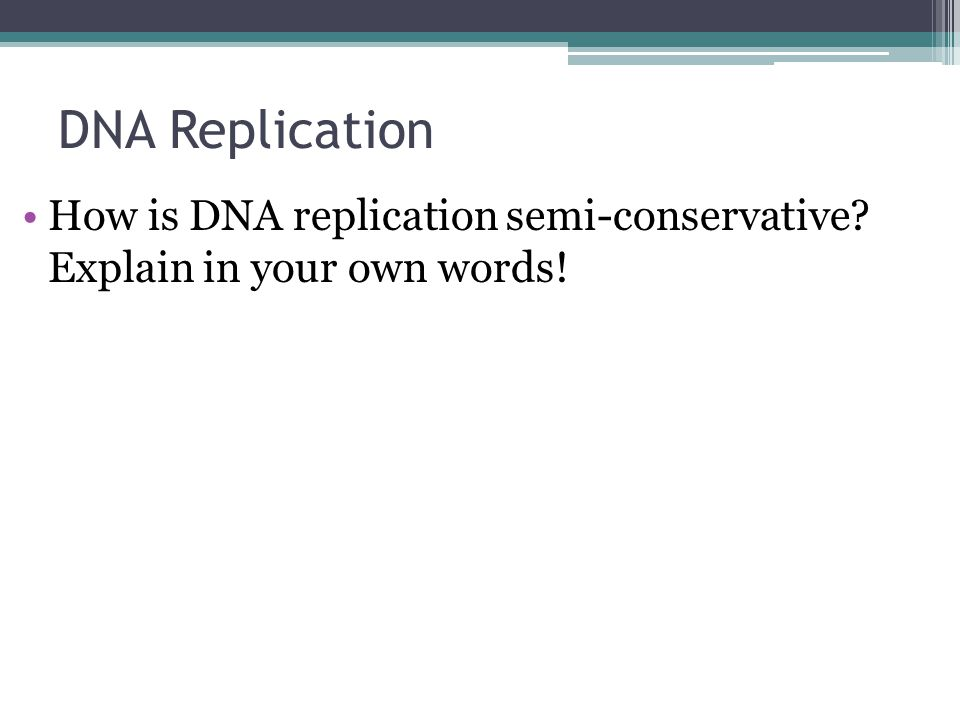 DNA Replication How is DNA replication semi-conservative? Explain in your own words!