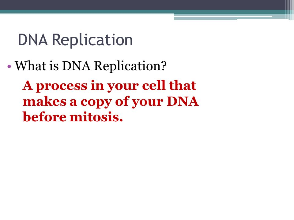 DNA Replication What is DNA Replication? A process in your cell that makes a copy of your DNA before mitosis.