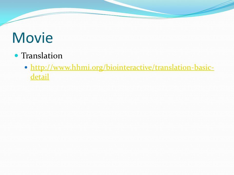Movie Translation http://www.hhmi.org/biointeractive/translation-basic- detail http://www.hhmi.org/biointeractive/translation-basic- detail
