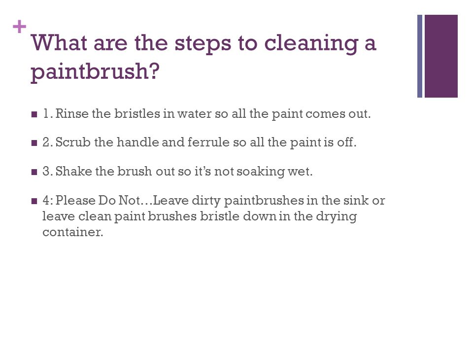 + What are the steps to cleaning a paintbrush. 1.