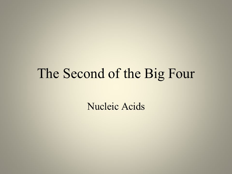 The Second of the Big Four Nucleic Acids