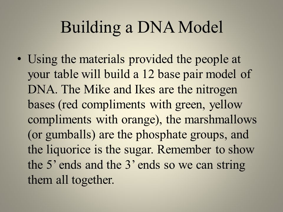 Building a DNA Model Using the materials provided the people at your table will build a 12 base pair model of DNA.