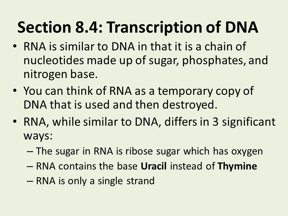 Section 8.4: Transcription of DNA RNA is similar to DNA in that it is a chain of nucleotides made up of sugar, phosphates, and nitrogen base. You can