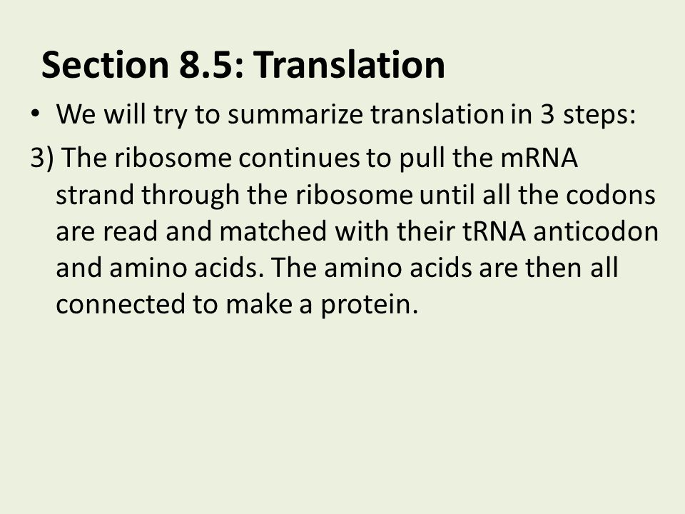 Section 8.5: Translation We will try to summarize translation in 3 steps: 3) The ribosome continues to pull the mRNA strand through the ribosome until