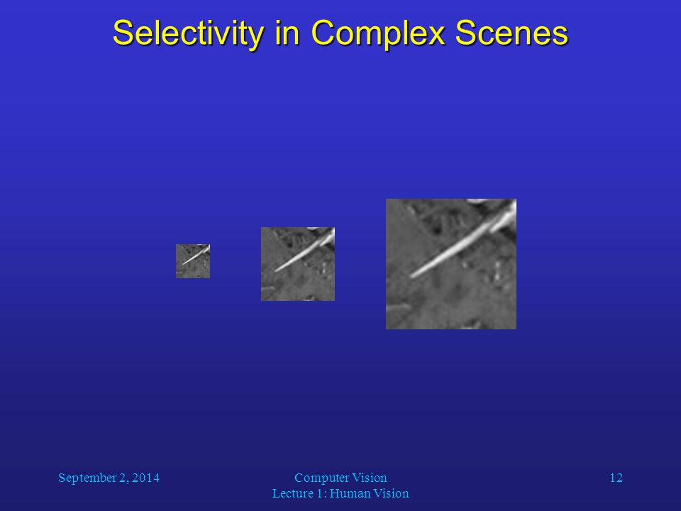 September 2, 2014Computer Vision Lecture 1: Human Vision 12 Selectivity in Complex Scenes