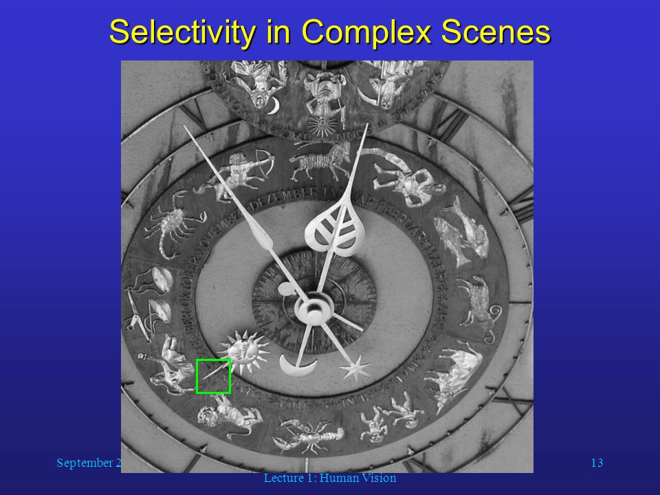 September 2, 2014Computer Vision Lecture 1: Human Vision 13 Selectivity in Complex Scenes