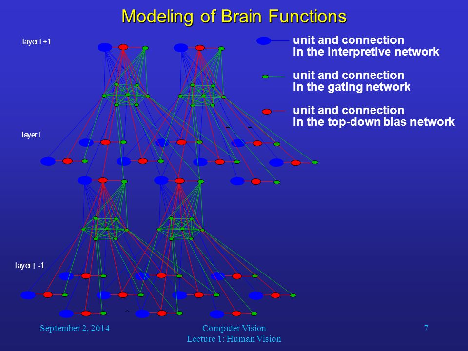 September 2, 2014Computer Vision Lecture 1: Human Vision 7 Modeling of Brain Functions unit and connection in the interpretive network unit and connec