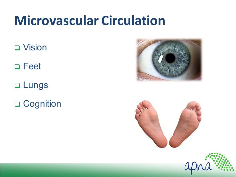 Microvascular Circulation  Vision  Feet  Lungs  Cognition