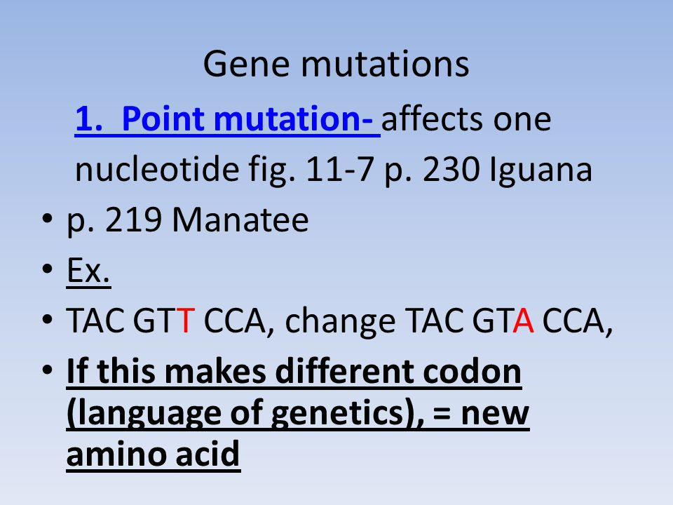 Gene mutations 1. Point mutation- affects one nucleotide fig.