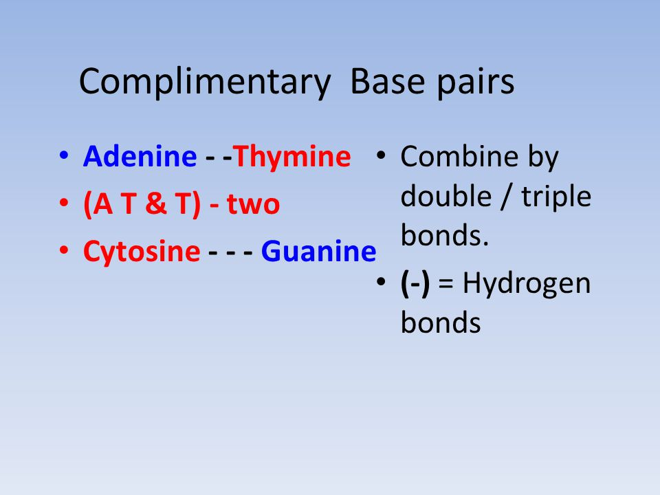 Complimentary Base pairs Adenine - -Thymine (A T & T) - two Cytosine - - - Guanine Combine by double / triple bonds.