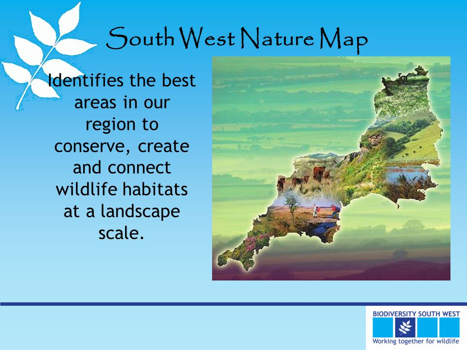 South West Nature Map Identifies the best areas in our region to conserve, create and connect wildlife habitats at a landscape scale.
