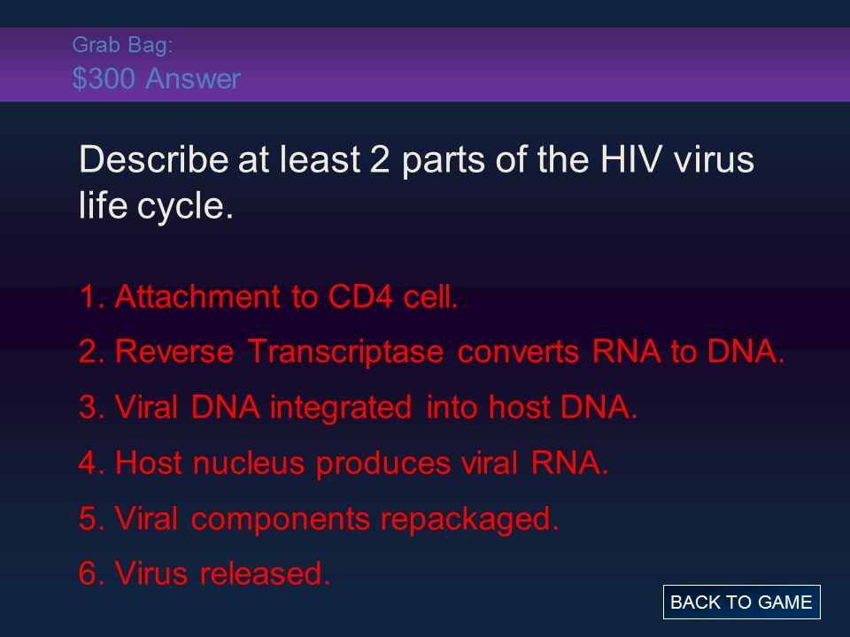Grab Bag: $300 Answer Describe at least 2 parts of the HIV virus life cycle. 1. Attachment to CD4 cell. 2. Reverse Transcriptase converts RNA to DNA.