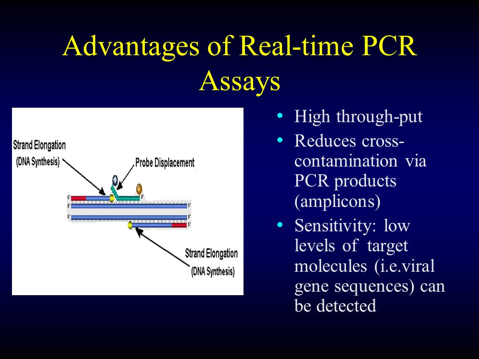 Advantages of Real-time PCR Assays High through-put Reduces cross- contamination via PCR products (amplicons) Sensitivity: low levels of target molecules (i.e.viral gene sequences) can be detected