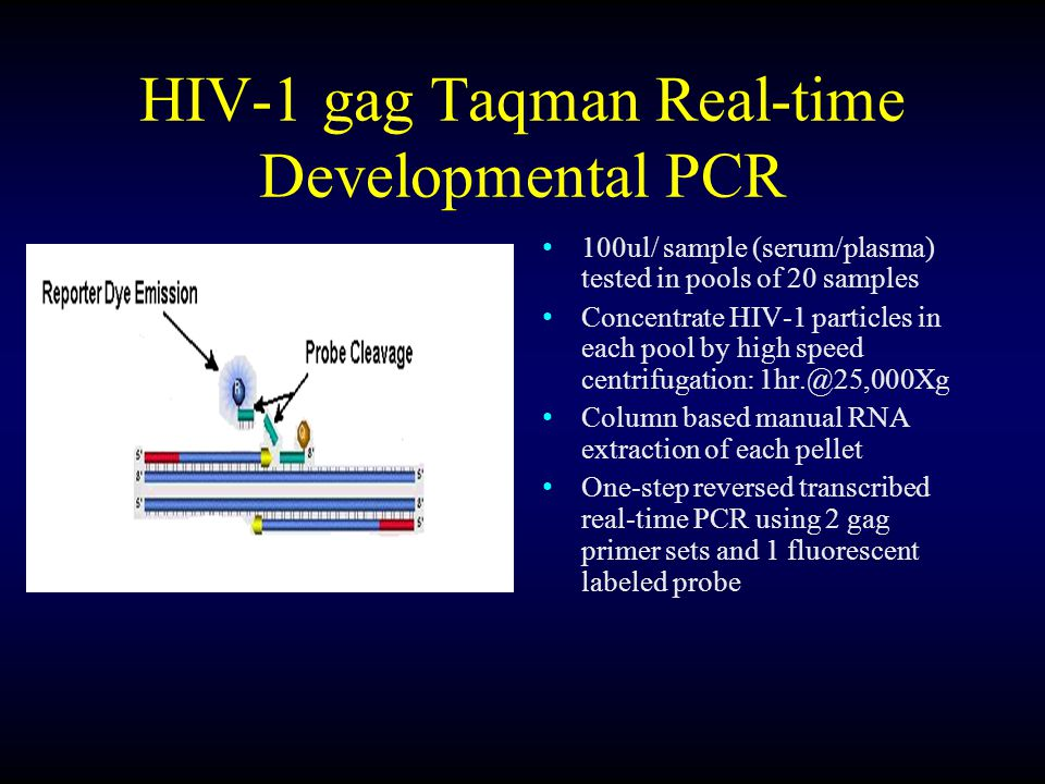 HIV-1 gag Taqman Real-time Developmental PCR: Controls RNA extraction controls(2): (-) sample buffer(BA) and LaCrosse virus lystate Internal positive control (IPC) is added and run with each extracted pool to determine if PCR inhibitors are present HIV-1 RNA assay low positive sensitivity and NTC(-) controls