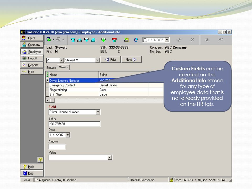 Custom Fields can be created on the Additional Info screen for any type of employee data that is not already provided on the HR tab.