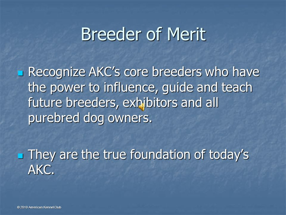 © 2010 American Kennel Club Breeder of Merit