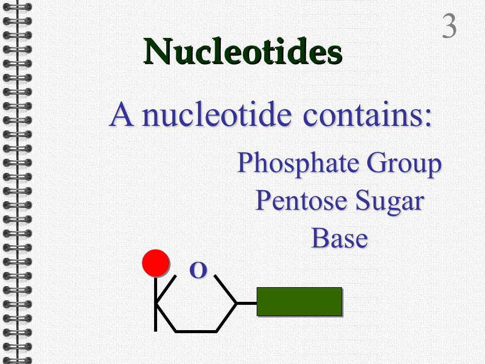2 'A' Level Biology Nucleic Acids