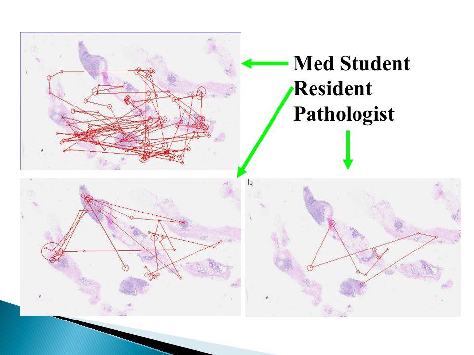 Med Student Resident Pathologist