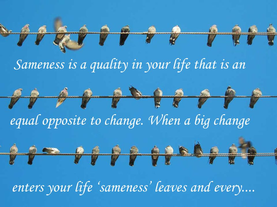 Sameness is a quality in your life that is an equal opposite to change.