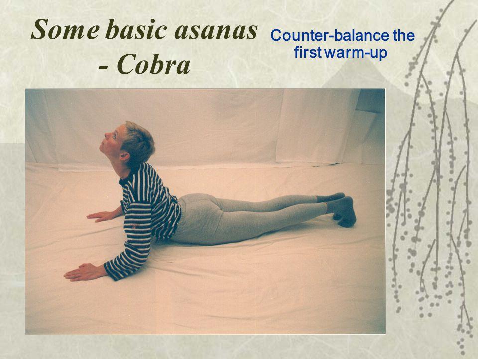 Some basic asanas - Cobra Counter-balance the first warm-up