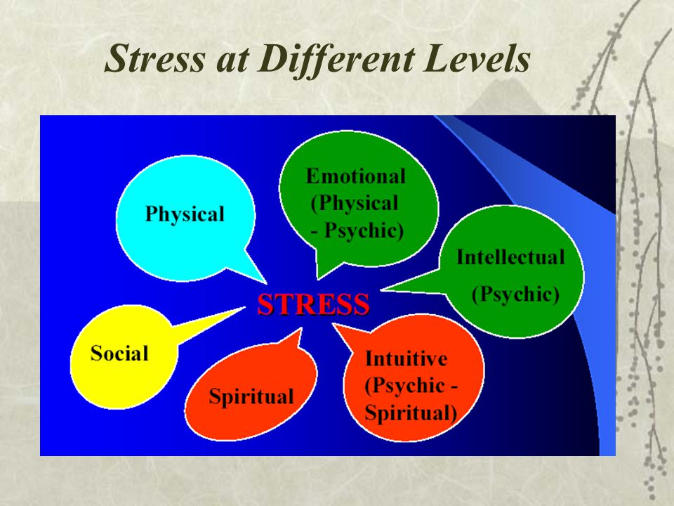 Stress at Different Levels