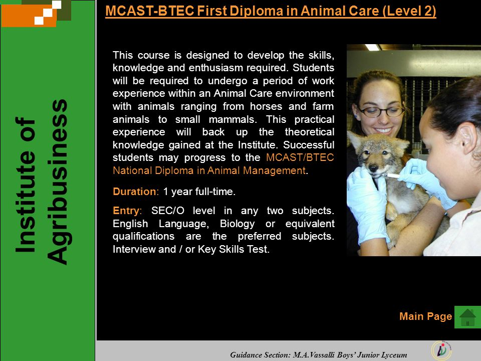 Guidance Section: M.A.Vassalli Boys' Junior Lyceum MCAST-BTEC First Diploma in Animal Care (Level 2) This course is designed to develop the skills, kn
