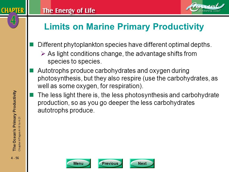 MenuPreviousNext 4 - 56 Limits on Marine Primary Productivity nDifferent phytoplankton species have different optimal depths.  As light conditions ch